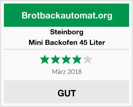 Steinborg Mini Backofen 45 Liter Test