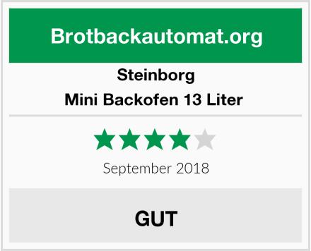 Steinborg Mini Backofen 13 Liter  Test